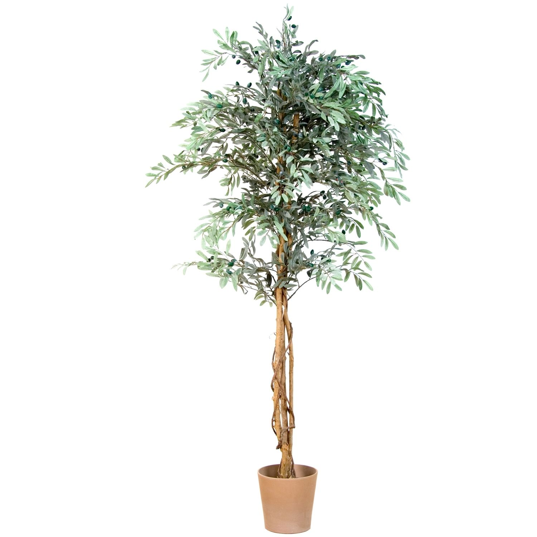 Umělá rostlina / olivovník - 180cm